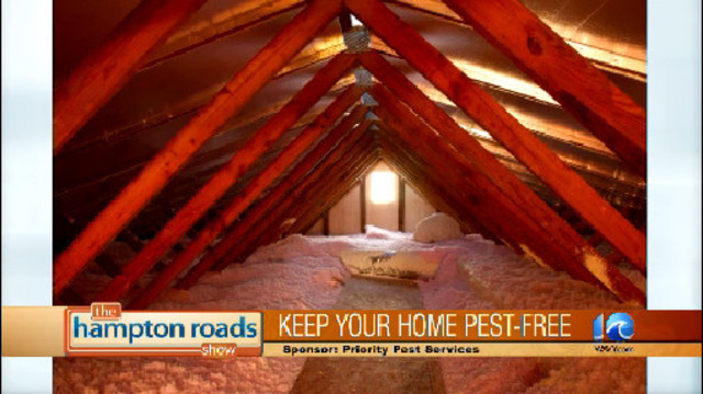 Keep Out the Pests with Priority Pest Services