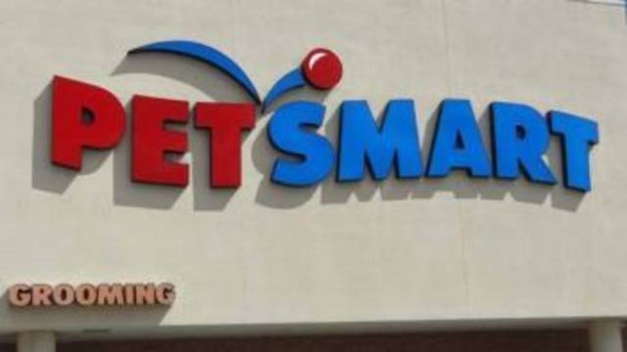 at least 47 dogs died after grooming at petsmart investigation claims