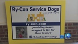 Company under investigation didn't train $14K service dog for VB man with autism, family says