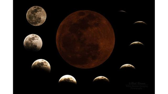 Wolf Moon Eclipse_1548092527020.jpg