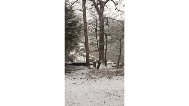 snow in hallieford