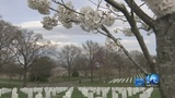 After WAVY report, Arlington National Cemetery to bury Navy wife with military honors
