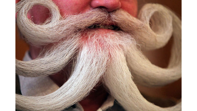 Men with beards carry more germs than dogs, study says